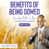 Benefits of being sowed, Love Story Ruth and Boaz part 1 (audio)