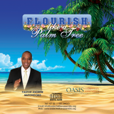 Flourish like a palm tree - Audio